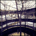Frank Titze, Ulm/Germany - No. 1030 : Trees I - Tree and Ramp - 640x640 Pixel - 293 kB