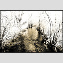 Frank Titze, Ulm/Germany - No. 1040 : BW I - Black River - 953x640 Pixel - 389 kB