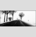 Frank Titze, Ulm/Germany - No. 1062 : Cine 2.35:1 I - Winter Country Drive V - 960x413 Pixel - 242 kB