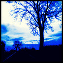 Frank Titze, Ulm/Germany - No. 1064 : Low-End Device - Winter Blue - 640x640 Pixel - 269 kB
