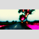 Frank Titze, Ulm/Germany - No. 1181 : Low-End Device - Trees on Fire II - 960x498 Pixel - 556 kB