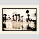 Frank Titze, Ulm/Germany - No. 125 : BW I - Palms at the Pool - 853x640 Pixel - 282 kB