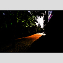 Frank Titze, Ulm/Germany - No. 1266 : Y 2013-08 - Evening Light - 953x640 Pixel - 386 kB