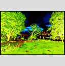 Frank Titze, Ulm/Germany - No. 1510 : Film 3:2 III - Cut Tree - 947x640 Pixel - 1141 kB