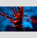 Frank Titze, Ulm/Germany - No. 2023 : Film 3:2 IV - Dancing Lights XII - 959x640 Pixel - 837 kB