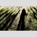 Frank Titze, Ulm/Germany - No. 2259 : Y 2014-07 - Selfshadow - 959x640 Pixel - 998 kB