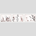 Frank Titze, Ulm/Germany - No. 2701 : Non Common II - Fruits on Trees - 960x227 Pixel - 154 kB