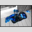 Frank Titze, Ulm/Germany - No. 300 : Film 3:2 I - Blue shoed Family - 947x640 Pixel - 206 kB