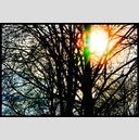 Frank Titze, Ulm/Germany - No. 3172 : Y 2015-05 - Winter Sun - 947x640 Pixel - 1123 kB