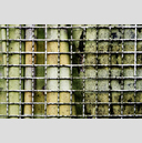 Frank Titze, Ulm/Germany - No. 3175 : Y 2015-05 - Curtain Grid - 959x640 Pixel - 982 kB
