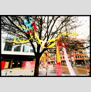 Frank Titze, Ulm/Germany - No. 3225 : Film 3:2 VI - Ribbons in the Tree I - 947x640 Pixel - 951 kB