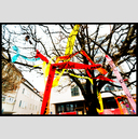 Frank Titze, Ulm/Germany - No. 3227 : Film 3:2 VI - Ribbons in the Tree III - 947x640 Pixel - 834 kB