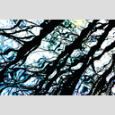 Frank Titze, Ulm/Germany - No. 3320 : Film 3:2 VI - Water Impression XVIII - 959x640 Pixel - 983 kB