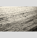 Frank Titze, Ulm/Germany - No. 3332 : Film 3:2 VI - Snow Field - 959x640 Pixel - 856 kB