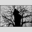 Frank Titze, Ulm/Germany - No. 3398 : Film 3:2 VI - In the Tree - 953x640 Pixel - 424 kB