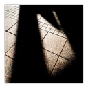 Frank Titze, Ulm/Germany - No. 3417 : Y 2015-08 - Shadows - 640x640 Pixel - 278 kB