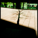 Frank Titze, Ulm/Germany - No. 3442 : Y 2015-08 - Green colored Shadow III - 640x640 Pixel - 353 kB