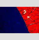 Frank Titze, Ulm/Germany - No. 3501 : Y 2015-09 - Red and Blue II - 959x640 Pixel - 1000 kB