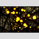 Frank Titze, Ulm/Germany - No. 3984 : Film 3:2 VII - Yellow Lights - 947x640 Pixel - 614 kB
