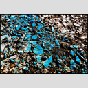 Frank Titze, Ulm/Germany - No. 4186 : Film 3:2 VII - Blue Color - 953x640 Pixel - 1197 kB