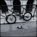 Frank Titze, Ulm/Germany - No. 4364 : Square 1:1 III - Bike and Dove - 640x640 Pixel - 372 kB