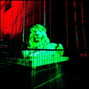Frank Titze, Ulm/Germany - No. 4590 : Square 1:1 III - Lion behind Bars - 640x640 Pixel - 433 kB