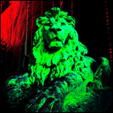 Frank Titze, Ulm/Germany - No. 4591 : Square 1:1 III - Majesty Lion - 640x640 Pixel - 584 kB