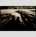 Frank Titze, Ulm/Germany - No. 4842 : Film 3:2 VIII - Shadow on Field - 947x640 Pixel - 625 kB
