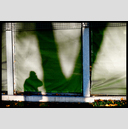 Frank Titze, Ulm/Germany - No. 4869 : Film 3:2 VIII - Green Shadows - 947x640 Pixel - 522 kB