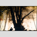 Frank Titze, Ulm/Germany - No. 4872 : Film 3:2 VIII - Tree Shadow with Photographer I - 953x640 Pixel - 1000 kB