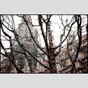 Frank Titze, Ulm/Germany - No. 4930 : Ulm Center - Winter Grey II - 953x640 Pixel - 807 kB