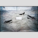 Frank Titze, Ulm/Germany - No. 4942 : Film 3:2 VIII - Gone Shoe Shop - 953x640 Pixel - 595 kB