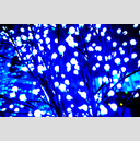 Frank Titze, Ulm/Germany - No. 4980 : Film 3:2 VIII - Blue Light - 959x640 Pixel - 851 kB