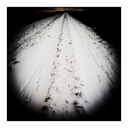 Frank Titze, Ulm/Germany - No. 5037 : Y 2017-06 - Footsteps through the Snow - 640x640 Pixel - 234 kB