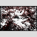 Frank Titze, Ulm/Germany - No. 5038 : Y 2017-06 - Blood Red Snow - 947x640 Pixel - 961 kB