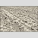 Frank Titze, Ulm/Germany - No. 5054 : Y 2017-06 - Snow on Field - 955x640 Pixel - 587 kB