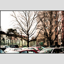 Frank Titze, Ulm/Germany - No. 5942 : Ulm West - Car Roofs and Trees - ImageWidth : --- xImageHeight : ---  Pixel - 958 kB