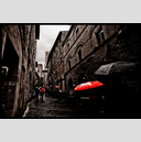 Frank Titze, Ulm/Germany - No. 6251 : Square 1:1 VIII - Red and Other Umbrellas - ImageWidth : --- xImageHeight : ---  Pixel - 587 kB