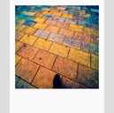 Frank Titze, Ulm/Germany - No. 6363 : Square 1:1 VIII - Show on Colored Ground - ImageWidth : --- xImageHeight : ---  Pixel - 498 kB