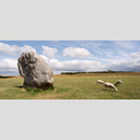Frank Titze, Ulm/Germany - No. 6470 : Square 1:1 VIII - Stone Circle and 6 Sheeps - ImageWidth : --- xImageHeight : ---  Pixel - 399 kB