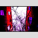 Frank Titze, Ulm/Germany - No. 744 : Trees I - Between Red Walls II - 947x640 Pixel - 463 kB