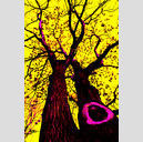 Frank Titze, Ulm/Germany - No. 754 : Trees I - Pop Art Tree - 427x640 Pixel - 321 kB
