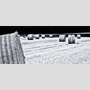 Frank Titze, Ulm/Germany - No. 8811 : Ulm West - Harvested Straw Field Roles IV - ImageWidth : --- xImageHeight : ---  Pixel - 342 kB