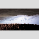 Frank Titze, Ulm/Germany - No. 8871 : .new. - Thunderstorm over Field - ImageWidth : --- xImageHeight : ---  Pixel - 337 kB