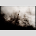 Frank Titze, Ulm/Germany - No. 999 : BW I - Smokestack behind Trees II - 947x640 Pixel - 101 kB