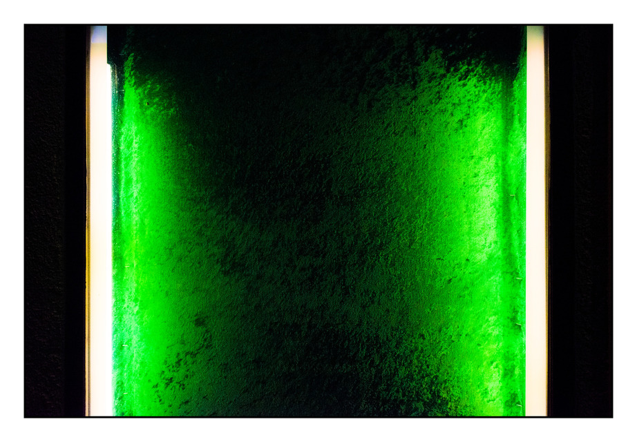 Frank Titze, Ulm/Germany - No. 378 : Reduced - Green - 922x640 Pixel - 231 kB