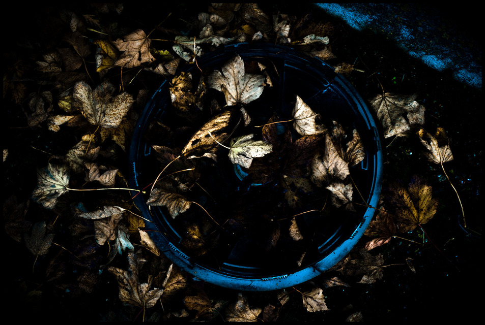 Frank Titze, Ulm/Germany - No. 648 : Others I - Hubcap filled with Leaves - 953x640 Pixel - 238 kB