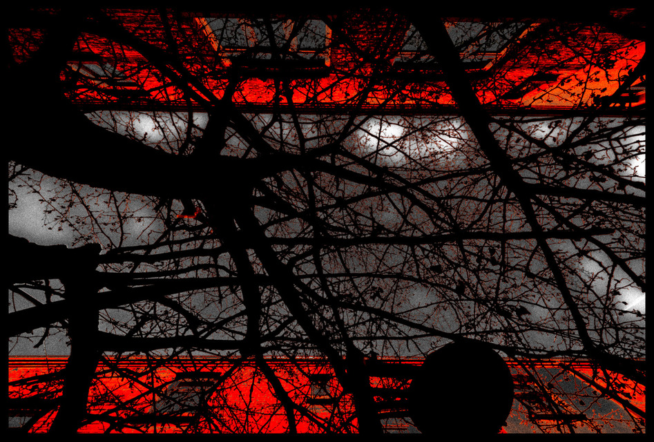 Frank Titze, Ulm/Germany - No. 743 : Trees I - Between Red Walls I - 947x640 Pixel - 384 kB