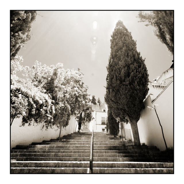 Frank Titze, Ulm/Germany - No. 5331 : Square 1:1 V - Stairway To I - ImageWidth : --- xImageHeight : ---  Pixel - 336 kB